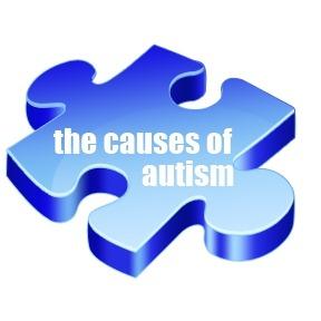 causes-puzzle.jpg