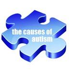 causes puzzle